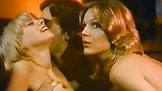 Reminiscences be fitting of a Young American Housewife (1974)